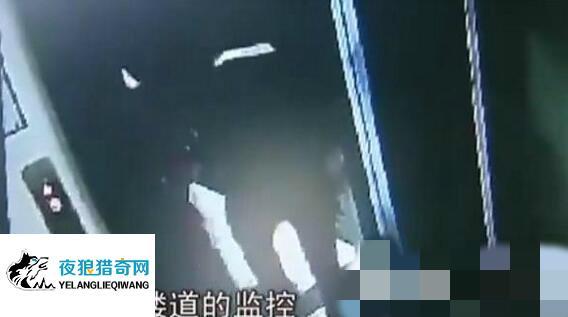 12岁小女孩电梯内惨遭色狼猥亵 内裤被强行扒走