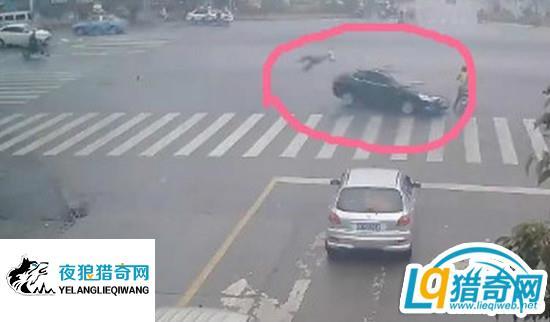 司机接电话油门当刹车 一名协警一名路人险些被撞死