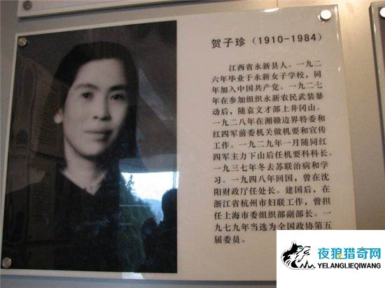 贺子珍简历,曾是毛泽东的第三任妻子